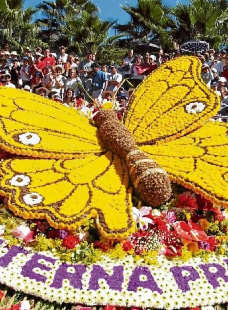 Feria de las flores medellín 2